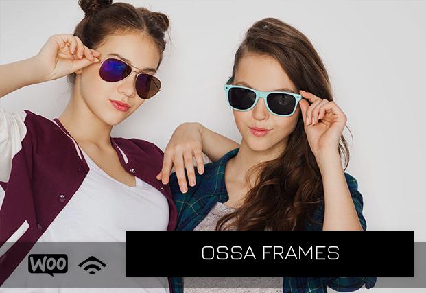 Ossa Frames case